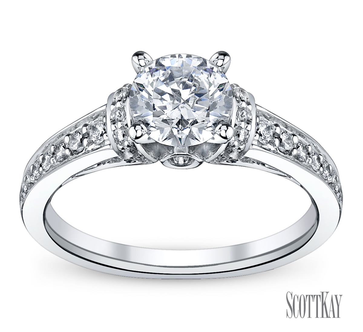Family Co Jewelers Scott Kay B1602r310: Engagement Ring Of The Day-Scott Kay